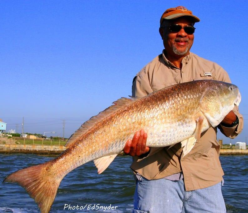 Fishing 15 lb test mono willis fred williams of missouri for Texas city fishing
