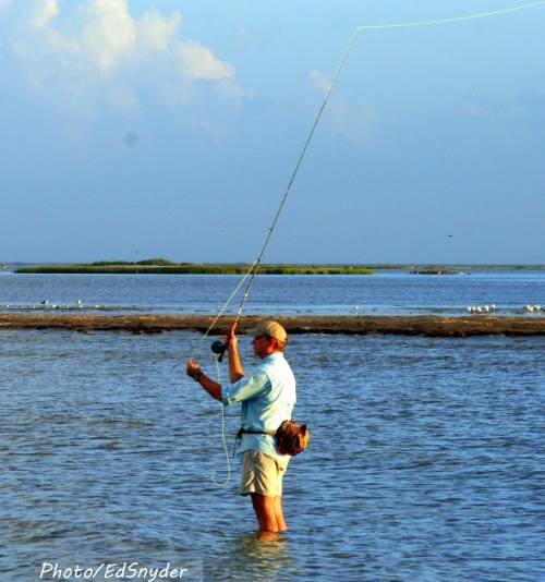 Fly angler working rollover bay with a streamer for for Rollover pass fishing report