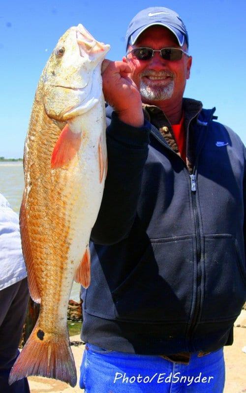 Texas fishing calendar 2014 new calendar template site for Fishing calendar texas