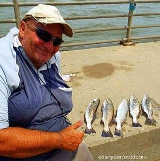 Hamshire TX angler Tony Mazzola nabbed these nice specks fishing shad