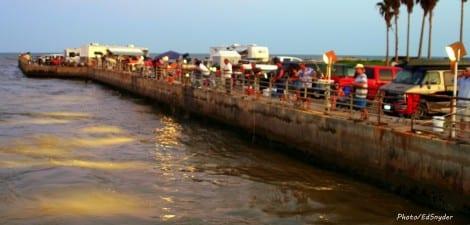 Popular night-fishing draws plenty of action