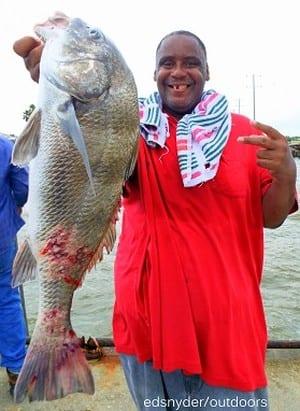 Reginald Philio of Humble hefts this nice drum caught on shrimp