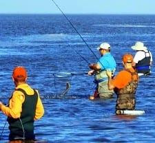 Bay wader nets a really nice flounder