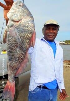 Houston angler Roger Thomas nabbed this nice drum while fishing live shrimp