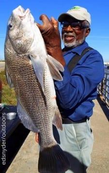 Jobbie Hollan of Houston took this nice keeper eater drum on shrimp