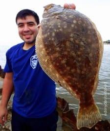OZ of OZ Mechanics in Pasadena took this nice flounder on live shrimp