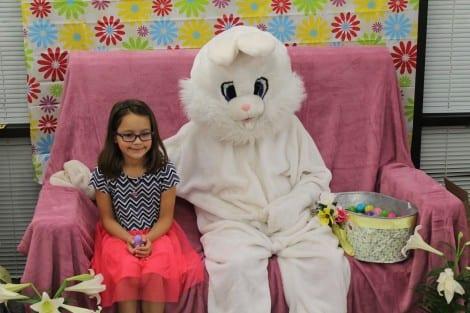 bunny_02