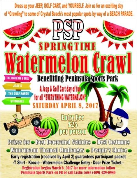 PSP-Watermelon_470