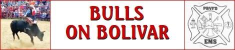 Bulls on Bolivar